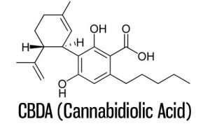 Cannabidiolic Acid (CBDA)