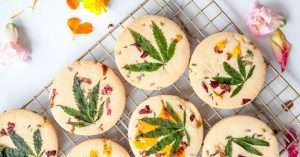 Does CBD Effect Your Appetite