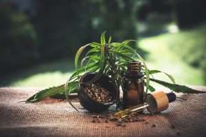 What is CBD Oil? It's made From Hemp